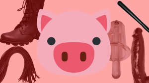 my transformation into a gay pig